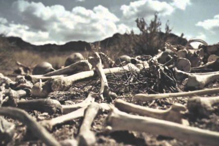 Rattling the Bones ~ Lent 5 04/02/17